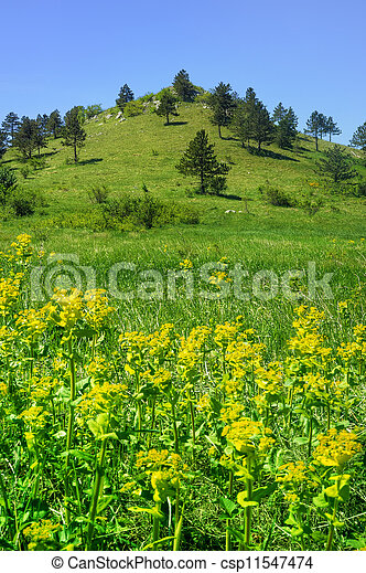Mountain landscape in Lika , Croatia - csp11547474