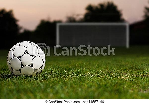 One football ball over green grass - csp11557146