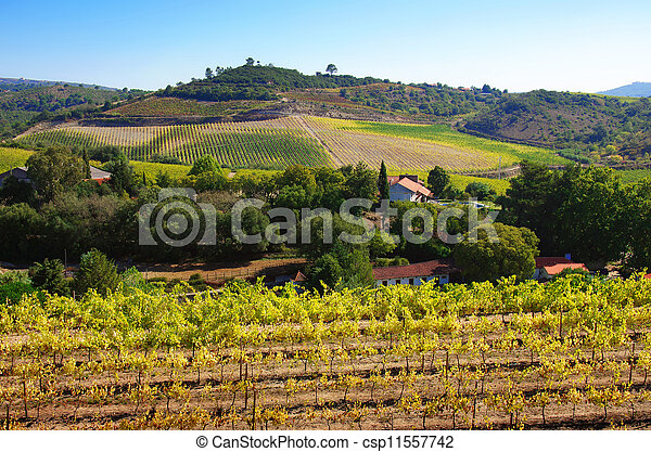 Rural Landscape - csp11557742