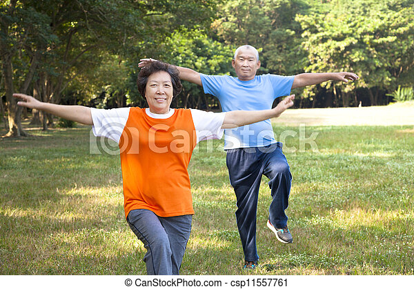 happy asian senior couple in the park - csp11557761