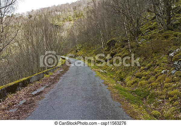 run-down road in rural landscape - csp11563276