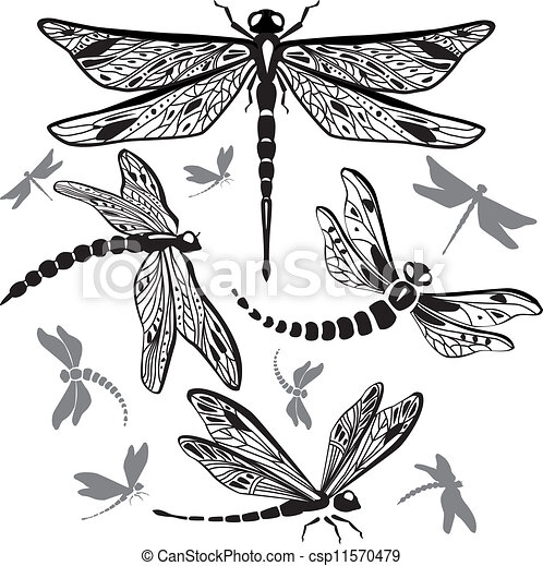 Small Dragonfly Drawing Set of Decorative Dragonflies