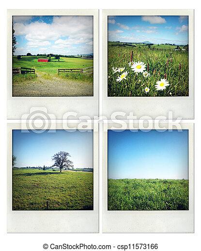 Rural scenes - csp11573166