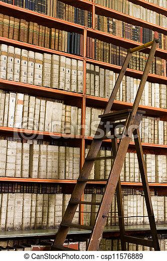 images de biblioth que entiers de vieilli livres et. Black Bedroom Furniture Sets. Home Design Ideas
