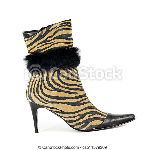 Femmes, botte, tigre, Raies, wh - csp11579309