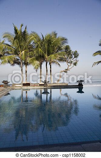 luxury swimmingpool - csp1158002
