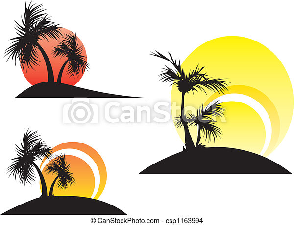 palm trees on a sunset - csp1163994