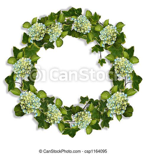 images de hortensia couronne lierre hydrangea fleurs et ivy csp1164095 recherchez. Black Bedroom Furniture Sets. Home Design Ideas