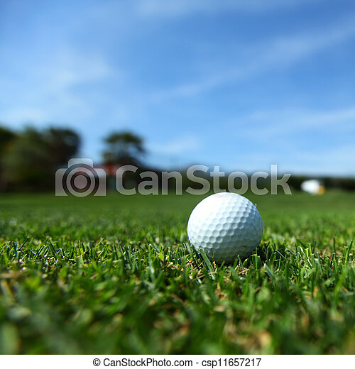 golf-ball on course