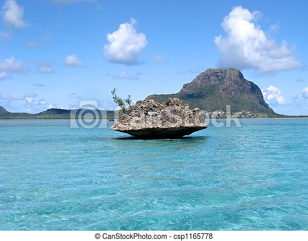 Tropical water Mauritius - csp1165778