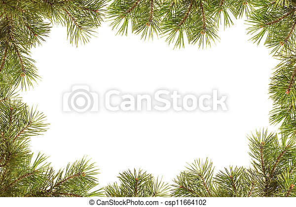 Border, frame from christmas tree branches - csp11664102