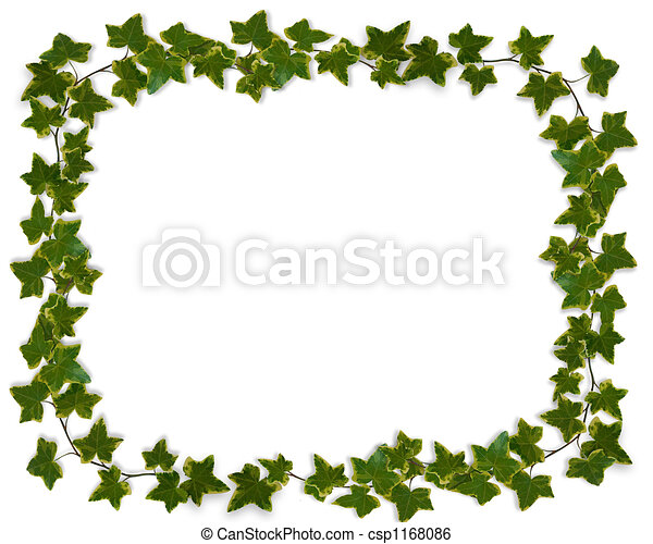 Ivy Border or Frame  - csp1168086