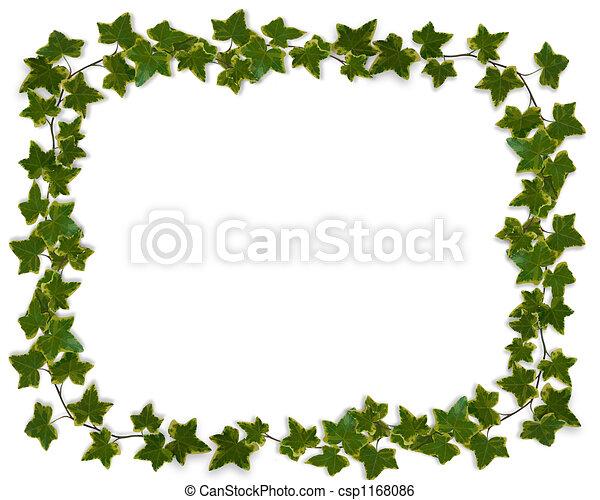 Ivy Border or Frame  - csp1168086