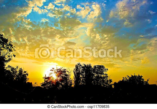 Sunset beyond the Tree - csp11709835