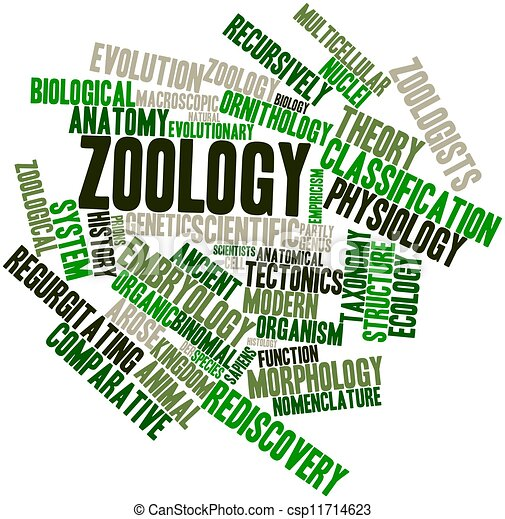 Clip Art of Zoology - Abstract word cloud for Zoology with ...