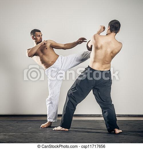 martial arts master - csp11717656