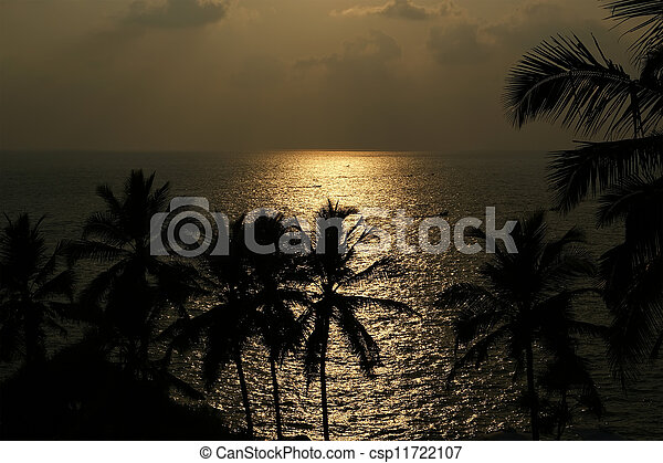 The contours of the coconut palms at sunset and ocean, Kerala, South India - csp11722107