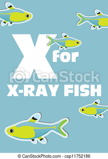 X For The X-Ray Fish, An... Vector Clip Art - Instant ...
