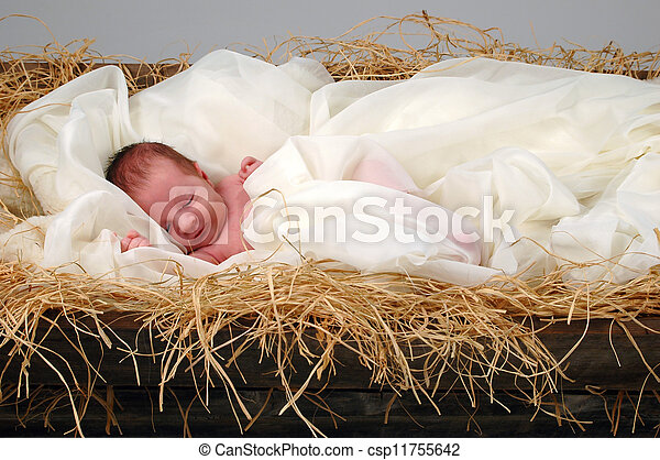 Baby Jesus in Manger - csp11755642