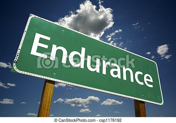 Endurance Road Sign - csp1176192