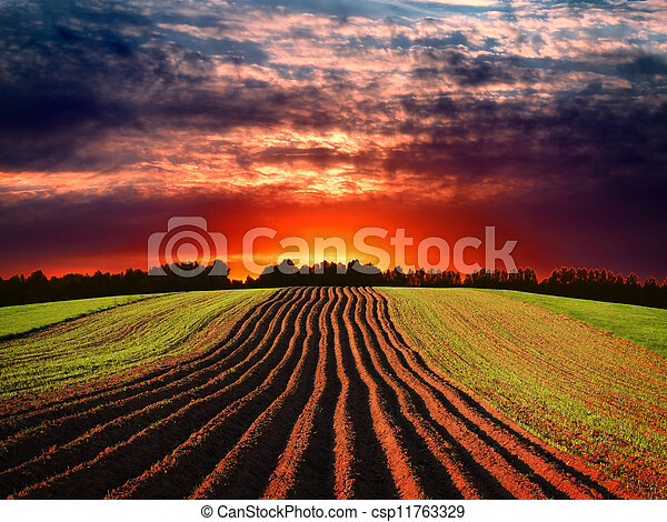 Rural landscape at sunset - csp11763329