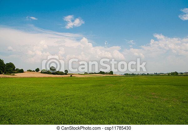 Polish agriculture - landscape  - csp11785430