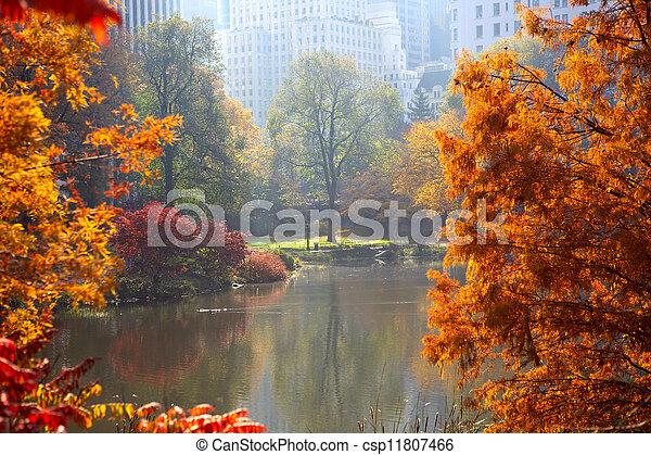 Autumn in Central Park - csp11807466