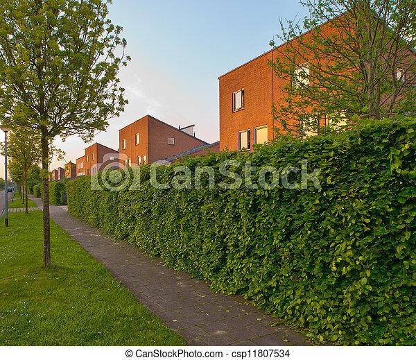 Photos de urbain trottoir rue haie suburban rue for Jardin 70 m2