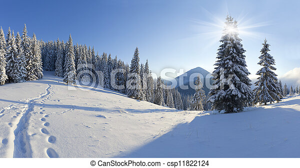Panorama of the winter morning in the mountains - csp11822124