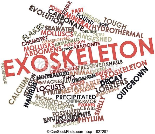 Exoskeleton - csp11827287