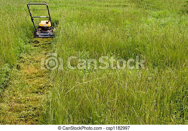 Mowing the Lawn - csp1182997