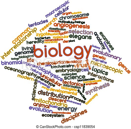 Stock illustration - word cloud for biology - stock illustration