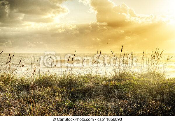 Sunrise in Satellite Beach - csp11856890