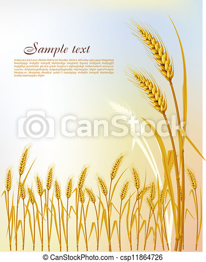 Background  with wheat - csp11864726