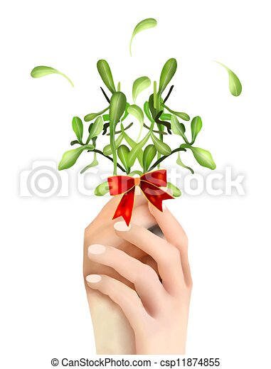 Hand Hoding Green Mistletoe with A Red Bow - csp11874855