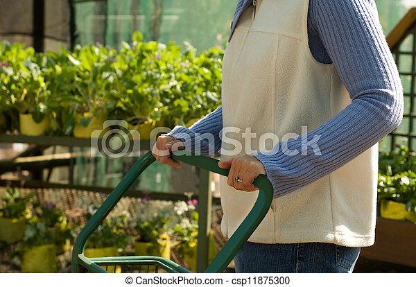 Lady Choosing Plants at Nursery