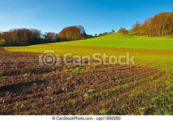 Agriculture - csp11892280