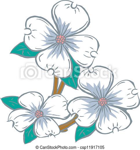 Vector Clipart of dogwood flowers - Flowering Dogwood csp11917105 ...