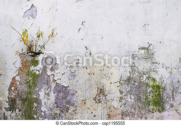 Corroded Wall - 2 - A cor - csp1195555
