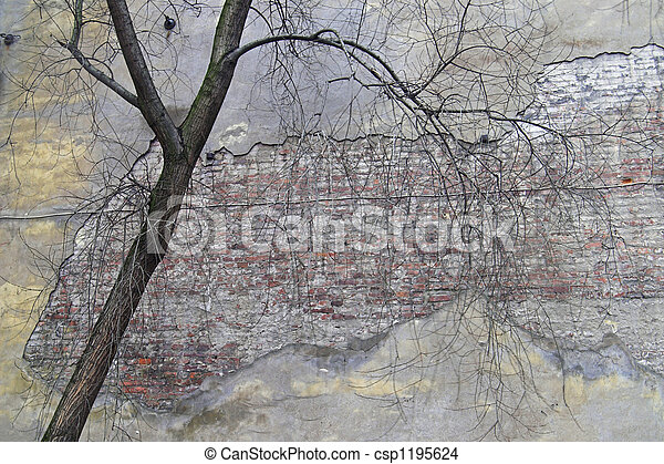 A corroded wall in a back - csp1195624