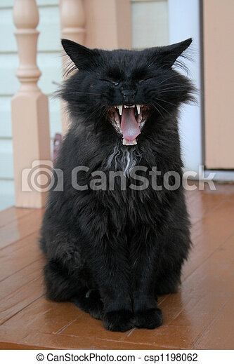 Pet-beast - csp1198062