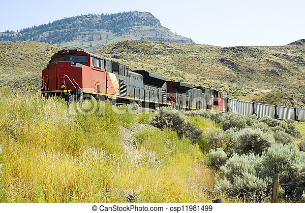 Freight Train - csp11981499