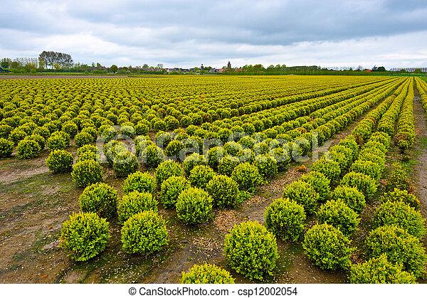 Agriculture - csp12002054