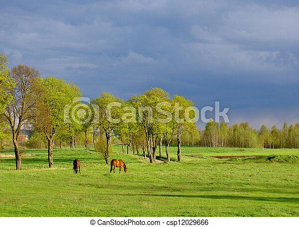rural view - csp12029666