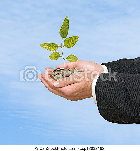 Sapling in hands - csp12032162