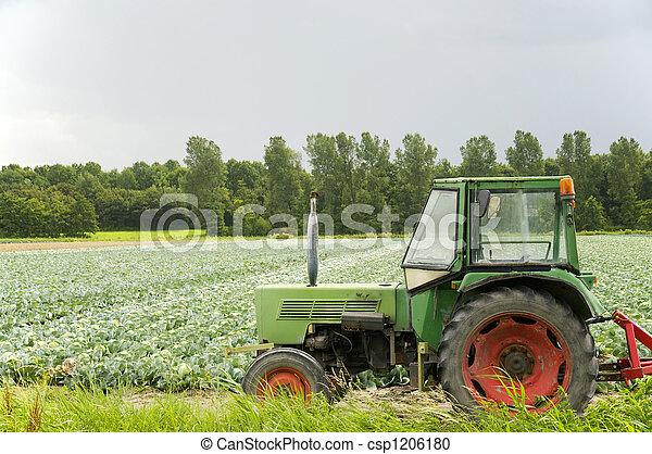 landwirtschaft, landschaftsbild - csp1206180