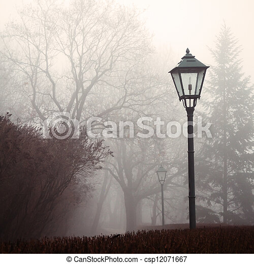 Street lamp and forest park in fog - csp12071667