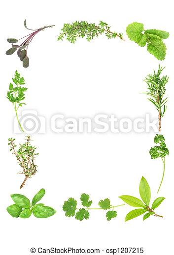 Fresh Aromatic Herbs - csp1207215