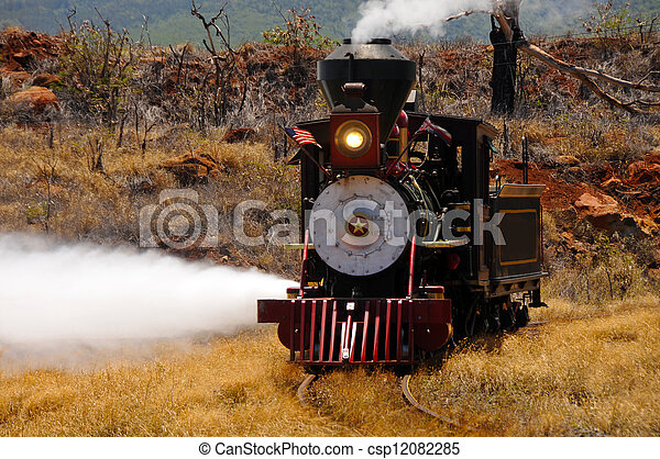 Steam Train From The 1800's - csp12082285
