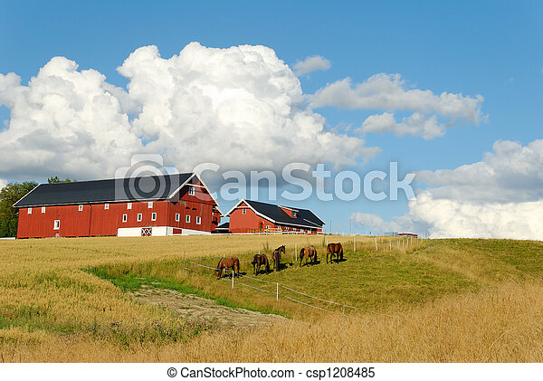 Horses by a Farm  - csp1208485